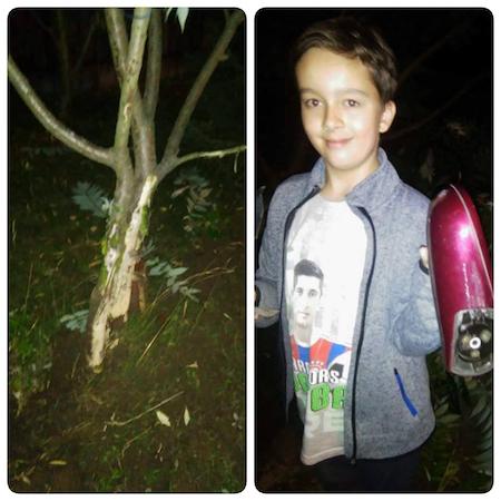 Latem samochód staranował drzewka, urwał lusterko i odjechał. 11-letni Mikołaj chciałby jeździć do szkoły rowerem, ale na ulicy jest zbyt niebezpiecznie