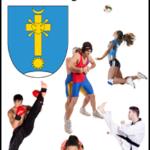 Sportowy plebiscyt 2016