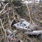 zdewastowany cmentarz w Słomczynie