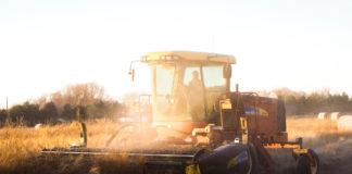 Bezpłatne szkolenia dla rolników