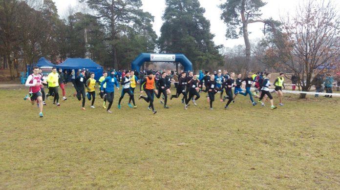 mistrzostwa wojewódzkie w biegach przełajowych
