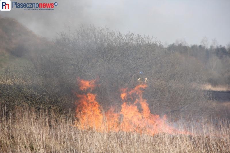 Podpalali a potem gasili? Dwóch strażaków trafiło do aresztu