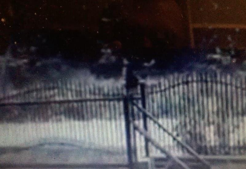 Policja poszukuje świadków pobicia kobiety! W sieci pojawił się film z tajemniczym przechodniem