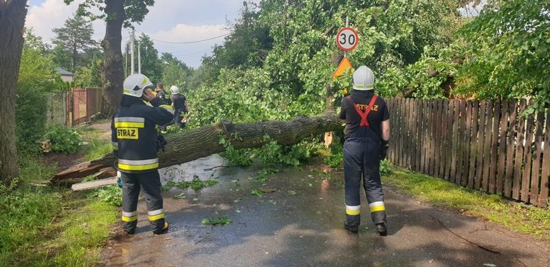 To była trąba powietrzna! Połamane drzewa, pozrywana sieć energetyczna, zablokowane tory PKP [AKTUALIZACJA]