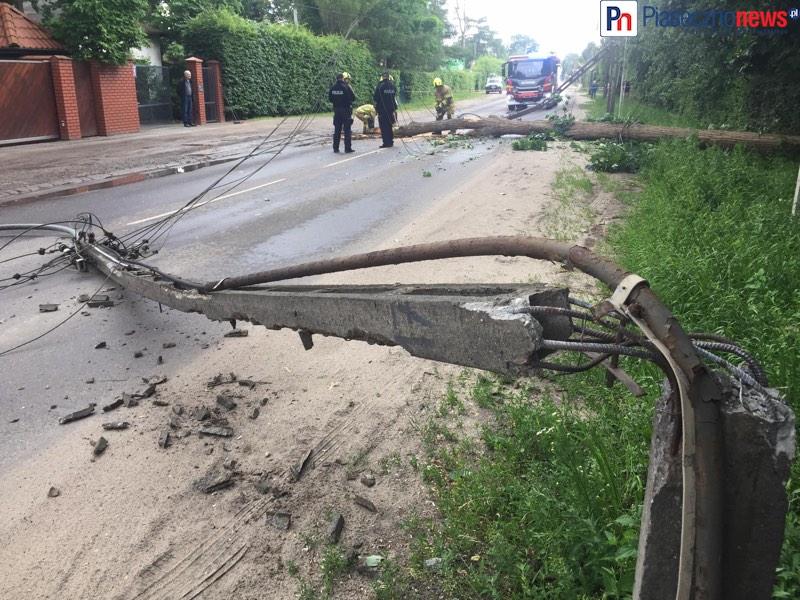 Ulica pod Bateriami zamknięta! Drzewo złamało trzy słupy